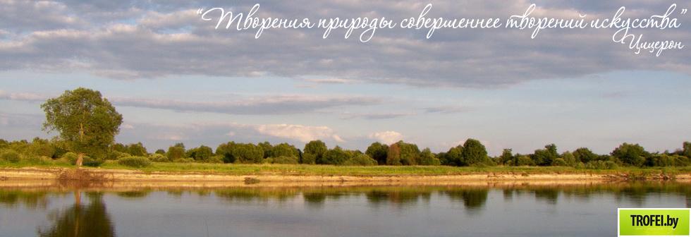 Белорусская природа