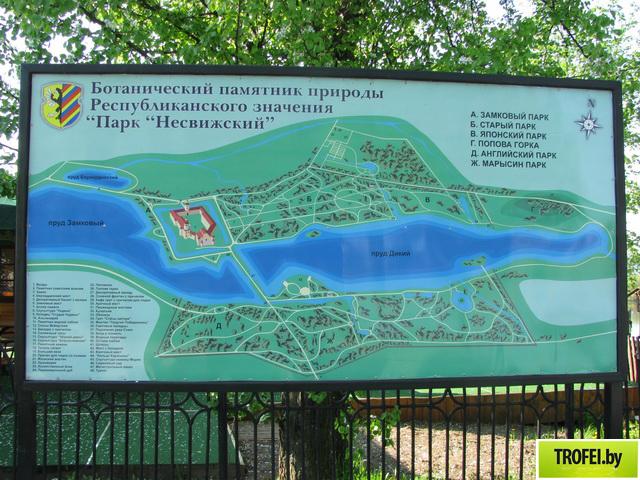 Карта Несвижского парка