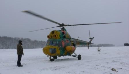 Охота на волка в Беларуси с вертолета