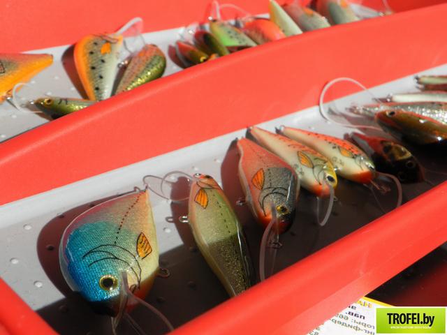 Фото с выставки охота и рыболовство