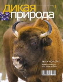 Белорусский журнал «Дикая природа»